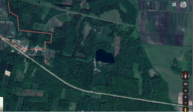 Малюнок 1. Озеро у лісі, фото з Google